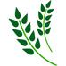 台灣農產品交易行情(蔬菜、水果、花卉、米糧)應用程式Logo
