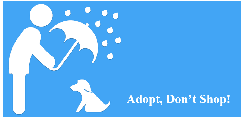 Icon of Pet Adoption Information in Taiwan APP