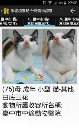 誰能領養我:台灣寵物認養Android app示意圖_列表